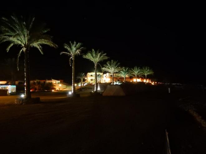 Coral Garden bei Nacht